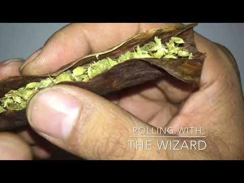 How to trim and roll a fronto leaf
