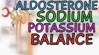 Aldosterone: Sodium and Potassium Balance - Na+/K+ Balance - Explained in 5 Minutes!!