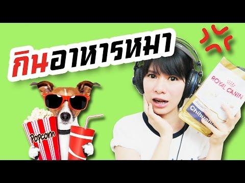 ท้ากินอาหารหมา ⊙﹏⊙【Dog Food Challenge】  | WiriWiri | (รีวิว อาหารหมา)