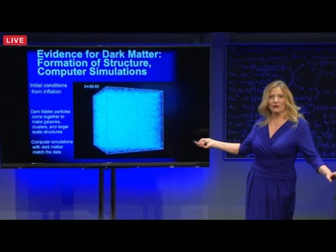 Katherine Freese Public Lecture: The Dark Side of the Universe