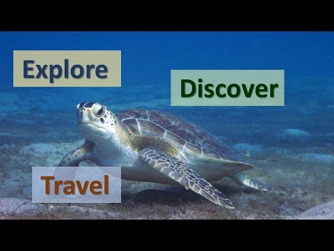 Explore, Discover, Travel – Channel Trailer