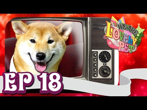 """We Are Lovely Pet - """"จ๋อย หมาหงอย"""" [Ep.18] 18+ l VRZO"""