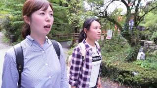 JAL 週末ふるさとTrip 熊本 水の生まれる里の湧水を訪ねて 「白川水源」、「湧水トンネル」