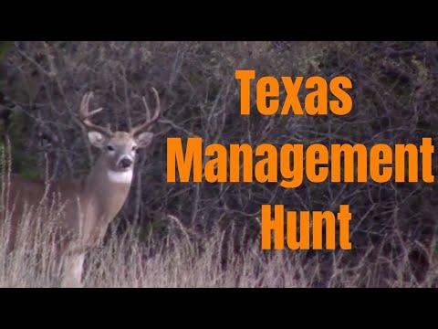 Nov. 2018 - Texas Management Deer Hunting