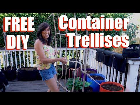 3 FREE DIY Trellises & How To Plant Container Vegetables/Container Garden Series #2