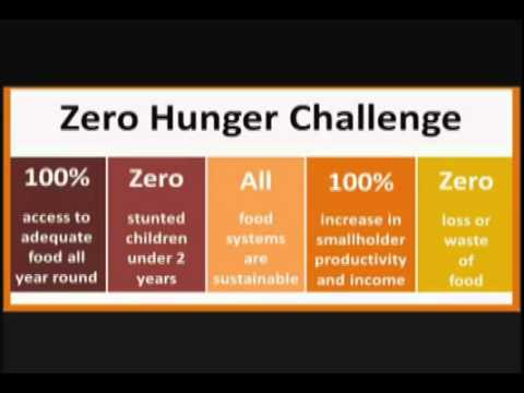 Zero Hunger Challenge - UN Secretary-General message