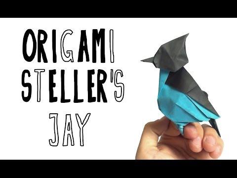 Origami Stellar's Jay (Riccardo Foschi)