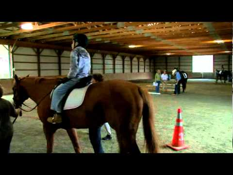 an introduction to therapeutic riding A therapeutic riding instructor is trained to teach riding and horsemanship skills to people with physical and developmental disabilities according to path, people with autism make up the largest category of participants served, followed by people with developmental delay, and those with attention deficit hyperactivity disorder.