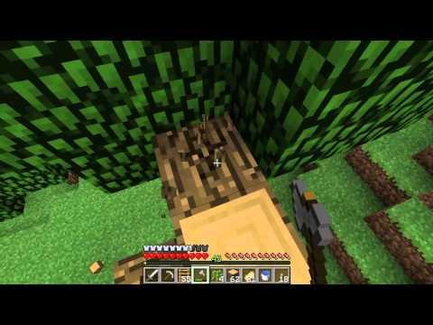 Let's Play Minecraft #070 Ein neuer Bewohner im Raststätten-WC | Sowasabaauch