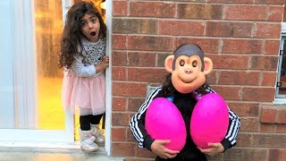 Monkey play HIDE and SEEK with Giant egg surprise!! Sally Pretend Play