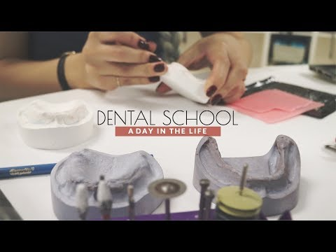 A DAY IN THE LIFE OF A DENTAL STUDENT | 치대생의 하루 일과