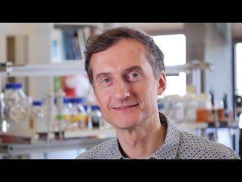 Alex Schier Appointed New Director of the Biozentrum