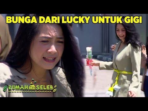 Setangkai Bunga Dari Lucky Untuk Gigi - Rumah Seleb (22/8)
