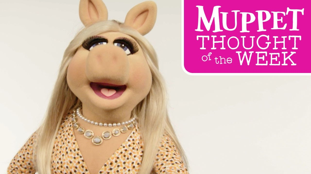 muppet thought of the week 10 miss piggy the muppets youtube