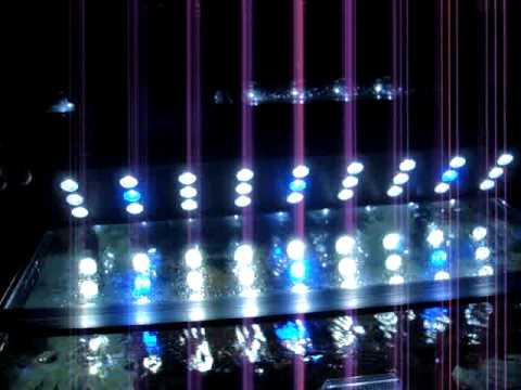 Marineland Cube Aquariums w New LED HO Light System - YouTube