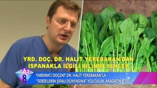 Yardımcı Doçent Dr Halit Yerebakan'la Sebzelerin Şifalı Dünyasına Yolculuk