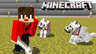 Minecraft: DUPLA SURVIVAL - EM BUSCA do MEU CACHORRO!!! (ENGRAÇADO) #39