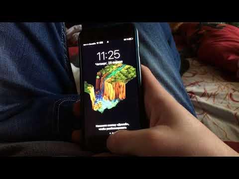 Проблемы с Siri IPhone 7 и IPhone 5s