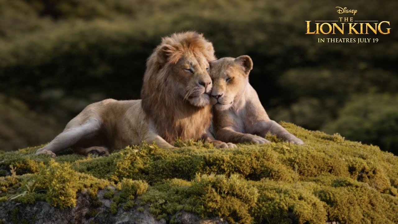 Can You Feel The Love Tonight Tv Spot The Lion King