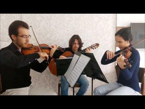 Trio Intermezzo