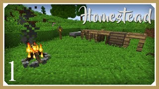 Minecraft Homestead Modpack | Homestead! | E01 (Hardcore Survival 1.10.2 Let's Play)