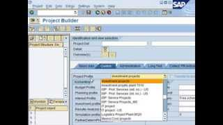SAP PS Overview Tutorial