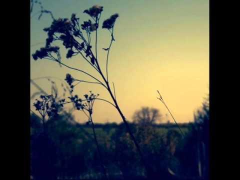 Wankelmut - One Day