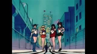 Sailor Moon- Carmen