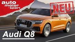 Der neue Audi Q8 (2018): Erste Sitzprobe - Neuvorstellung/Review | auto motor & sport