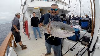 YELLOWTAIL AND YELLOWFIN TUNA FISHING ON THE OCEAN ODYSSEY SPORTFISHING 7/11/2015