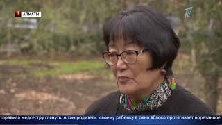 Начесали: Вшей для лечения гепатита предлагают в Казахстане