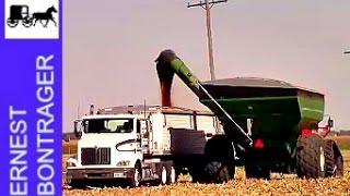 2016 Corn Harvest in Arthur Illinois