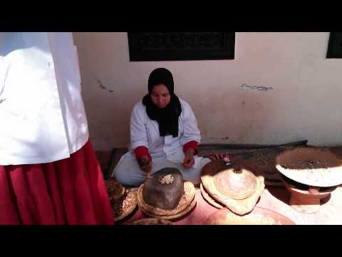 Morocco Marrakesh, Ourika Valley, The Diwane Hotel, Camel/Quad Riding And More!