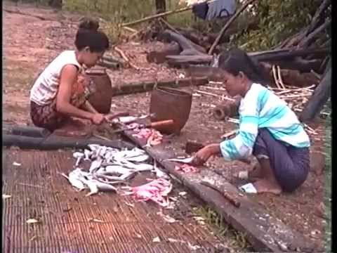 Samapi Naew Pung (Pa Daek Pakse) Lao, Non Sub.