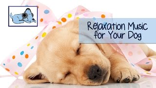 Relax Your Puppy - Relaxation Music for Dogs! Relax My Dog are expe...