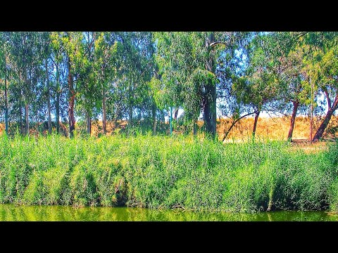 Top Rated Tourist Attractions In Ramat HaSharon, Israel | 2020