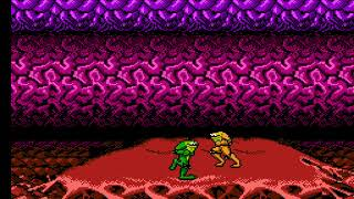 "[TAS] NES Battletoads ""game end glitch"" by MESHUGGAH, feos & Koh1fds in 00:55.66"