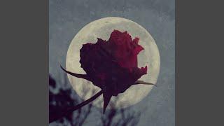 Roze (Feat. Dala)