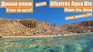 Египет 2021 Шарм Эль Шейх Albatros Aqua Blu Поход на дикий пляж Живой коралл Стоит ли идти