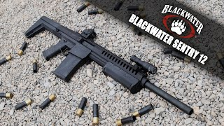 This isn't really so much of a product review the blackwater firearms sentry 12, as it's intended to be overview video. in video, i unbox t...