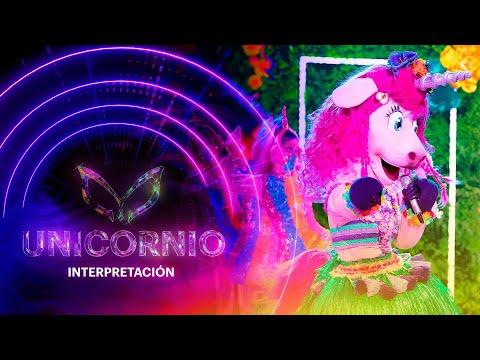 #UnicornioEs ¡Unicornio quiere acusar a Juanpa Zurita con Mapache por coqueto!   Interpretación