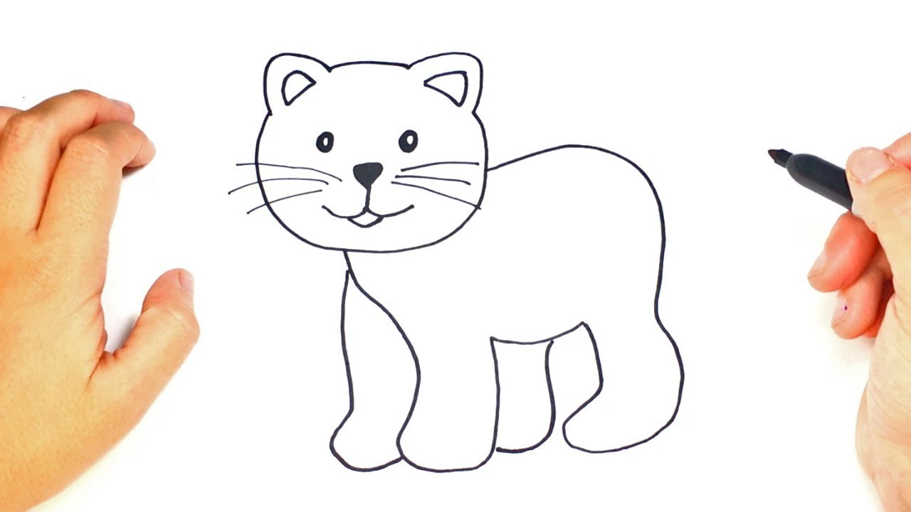 Step By Step To Draw A Cat