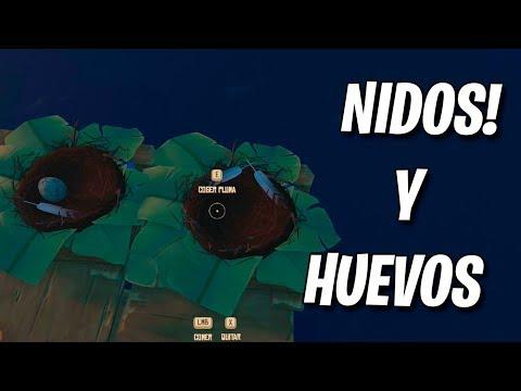 NIDOS DE GAVIOTA!! RAFT (JUEGO COMPLETO)