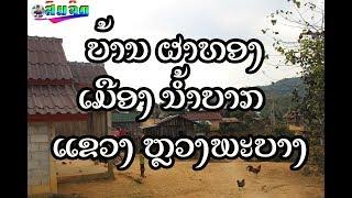 ບ້ານ ຜາທອງ ເມືອງ ນ້ຳບາກ ແຂວງ ຫຼວງພະບາງ Khmu village