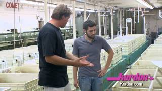 BZTV by HIKARI at Segrest Farms in Florida - Koi freshwater