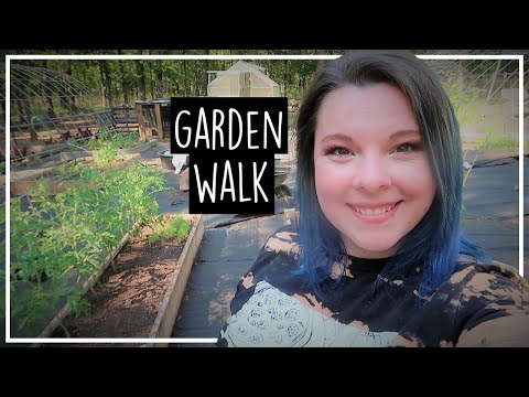 June Garden Tour//Zone 7b//What's growing in June? from YouTube · Duration:  24 minutes 4 seconds