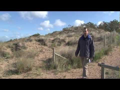 La dune : gestion fixation végétation biodiversité laise mer Pierre Attelée Saint-Brévin trait