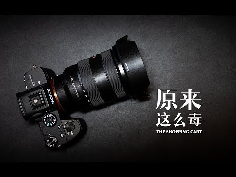 风光人文通吃的超广角镜头,索尼FE16-35mmF2.8GM:原来这么毒 12集