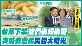 【午報精華】20210314 逢日必軟? 鳳梨怪陸.香蕉怪農民? 藍轟:兩套標準