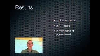 Glycolysis and Krebs